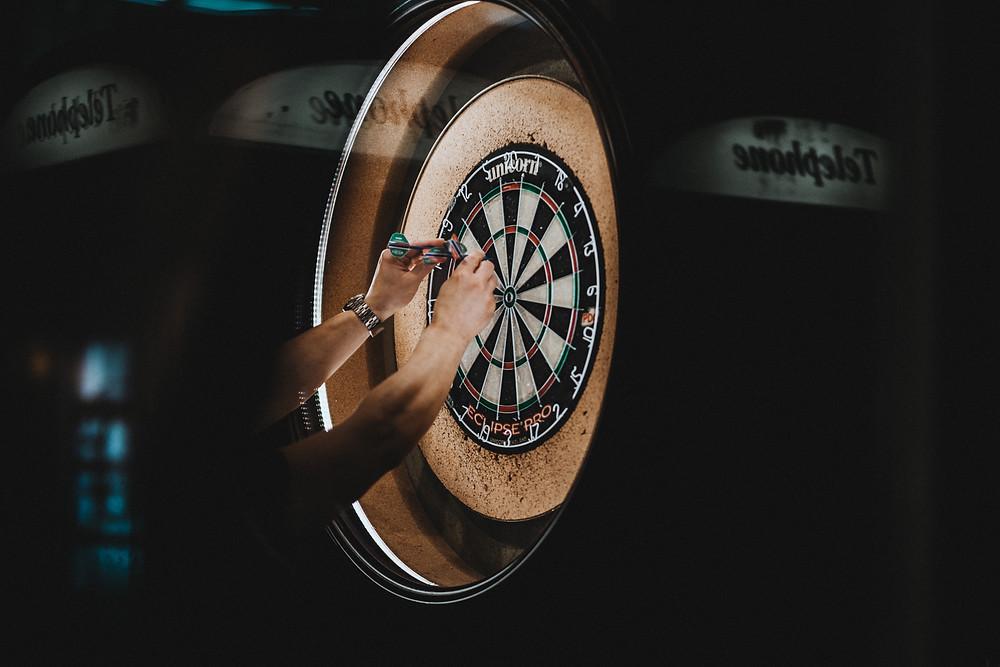 Professional darts championship players