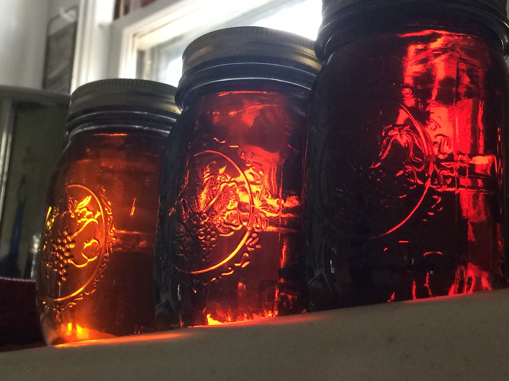 Three jars of maple syrup sit in the sunlight. Differences in color are noticeable, from light, to golden, to amber.