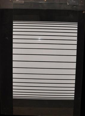 5mm Glass Tub Door Panel