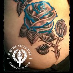 blueroses.jpg