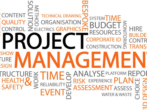 Does Project Management Matter?