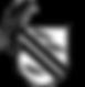Cybertronic Coatings Logo