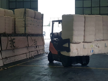 Algodão exporta 70% mais e se destaca na balança comercial