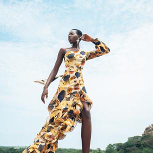 Vallery chiffon dress