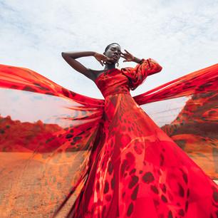 Lele dress