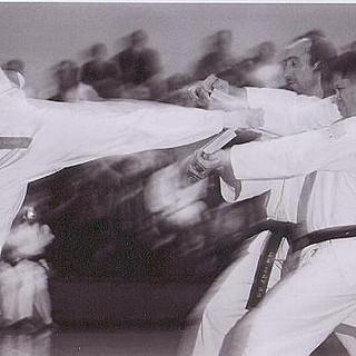 Master Stevens-360 Spin Kick (2 Boards)