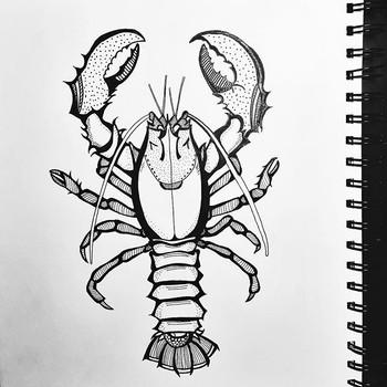 La la la lobster ._._._.jpg