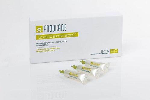 Endocare Concentrate: Intensive Repair