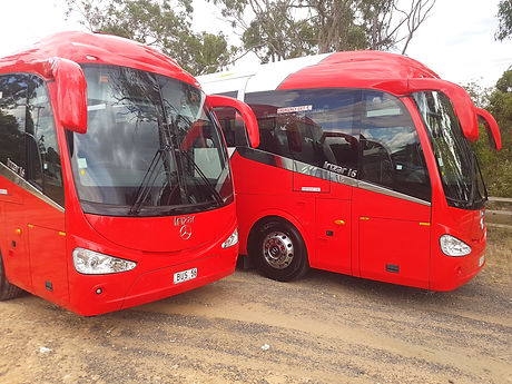 Buses forhire in brisbane and ipswic