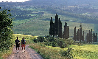 WTSI-tuscany-umbria-walking.jpg