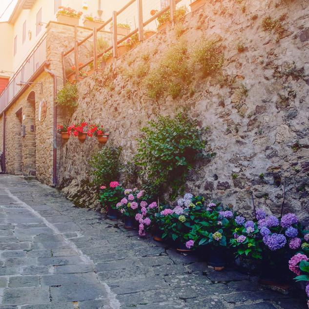 san_gennaro_castello-5824 copy.jpg