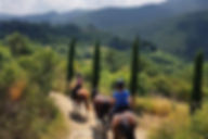 Horseriding Lucca Hills, Tuscany, Bed and Breakfast Lucca, Pisa, Florence, Tuscan Vacation. Bed and breakfast in Tuscany. Wedding, italian food. Italy, Italian vacation