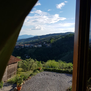 View from Bedroom window at A