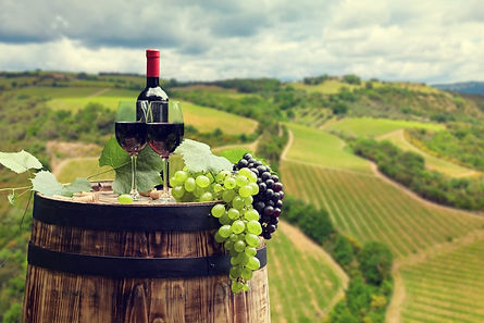 WineTastingView-1024x683.jpg