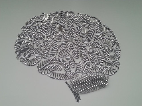 The Mind (Parts)