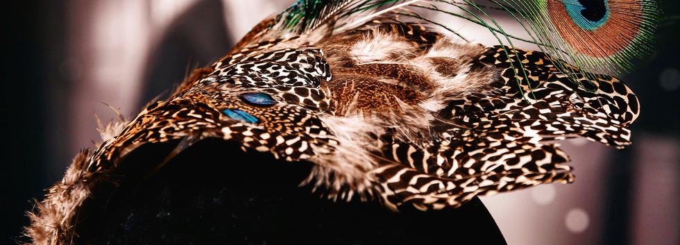 Feather Fasincator