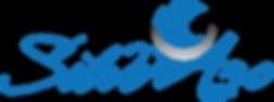 SilverArc Apn Logo