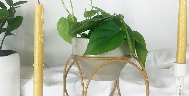 Orbit Plantstand