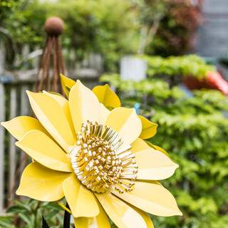 Blütentraum gelb