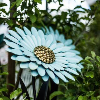 Lieblingsblüte von Elke
