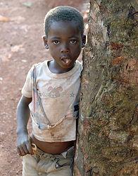 uganda-kampala-dirty-tree.jpg