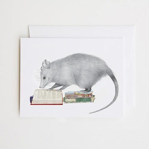 Note Card: HENRY GOSSAMER Opossum