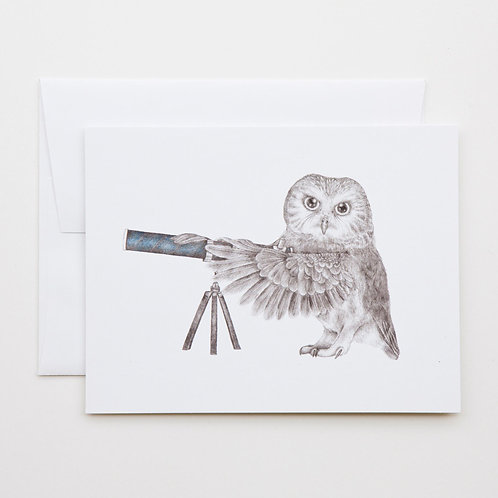Note Card: PEARL PAPINEAU Saw Whet Owl