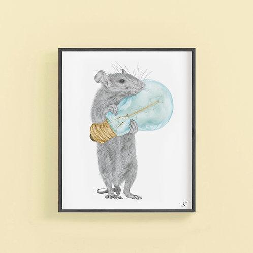 GRIFFITH SUCRECOEUR RAT