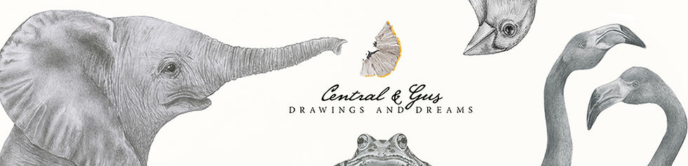 ?Central and Gus banner2.jpg