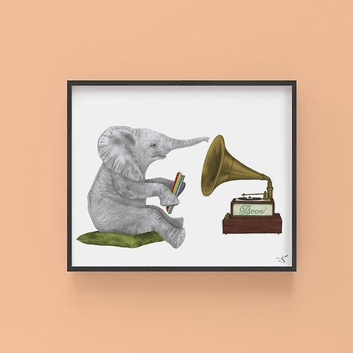 NEWTON CHAPEL AFRICAN ELEPHANT