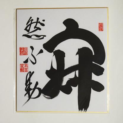 Jaku Nen Fu Do.  Serene Mind is Immovable.   La Mente Serena es Inamovible.     24 x 27 cm  Disponible
