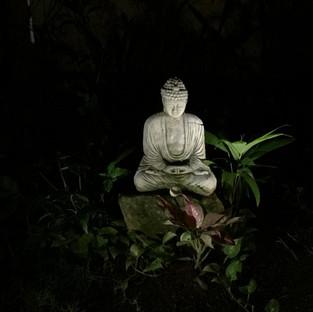 Encuentra la Calma en cada Momento - Comunidad de Budismo Zen One Drop México.