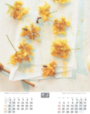 Layout_Duftkalender-neutral_0503_Seite_0