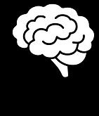 brain in head.png