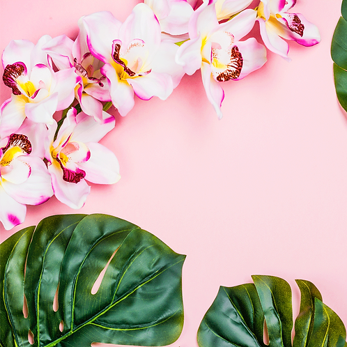 Aloha Orchid Scented Moisturizing Body Lotion