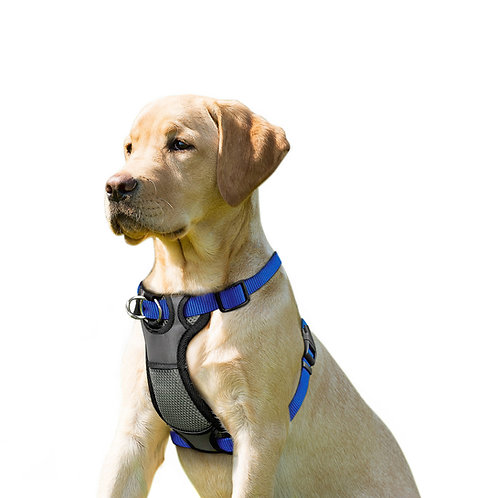 JESPET Blue Dog Harness No Pull with Adjustable Straps for Behavior Trai
