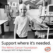 Wilms Tumor, Nephroblastoma Cancer Information, Research, Statistics & Support