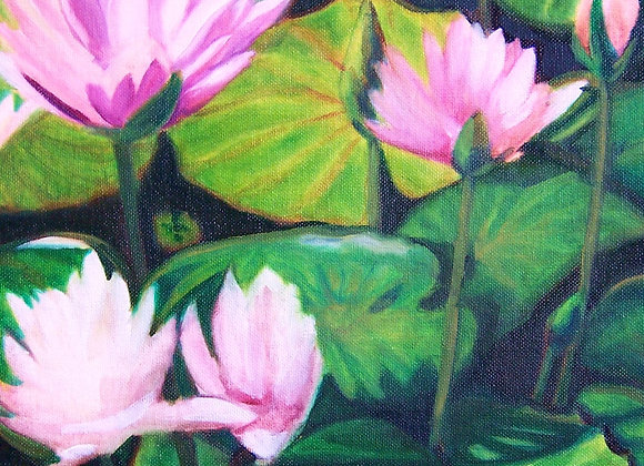 """Water Lilly Blooms"" Painting"