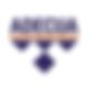 Logo Google ADECUA.png