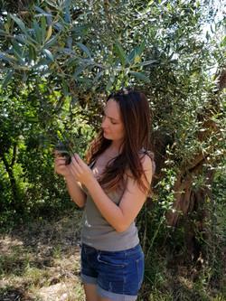 Controllo della salute delle piante