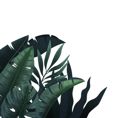 plantas_edited_edited.png