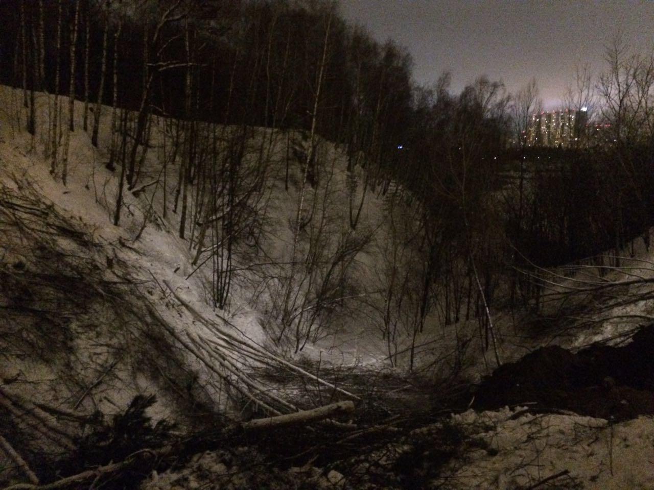 Карьер в начале вырубки деревьев