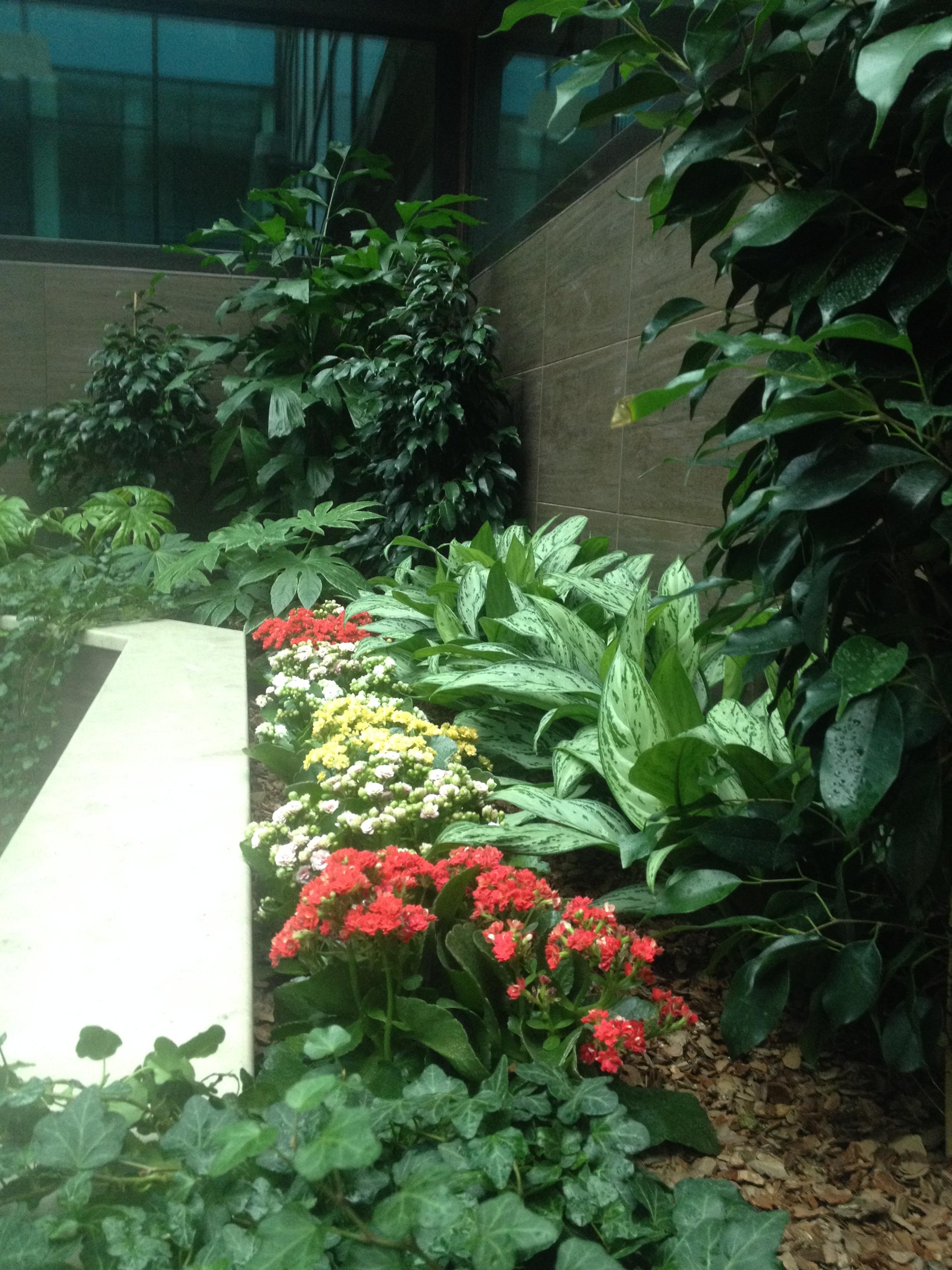 Элемент зимнего сада