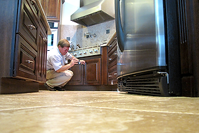 Thorough pest inspections