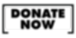 DONATE NOW-01.png