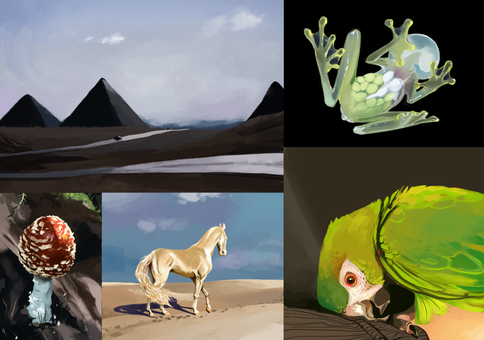 Digital studies based on pictures. Spent approx one hour on each.