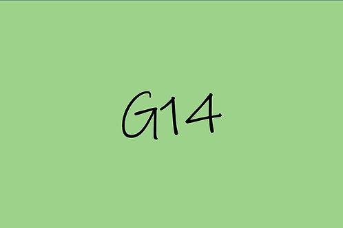 Copic Sketch G14