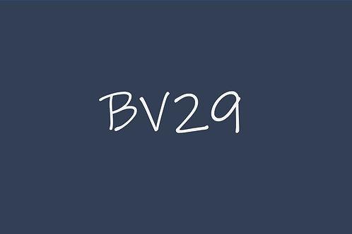 Copic Ciao BV29
