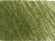 173 - Olive green yellowish