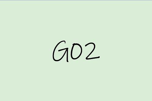 Copic CIao G02